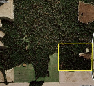 16 Acres Hunting Land For Sale in Adams County, Illinois #100314