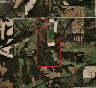 237 Acres Hunting Land For Sale in Pike County, Illinois #100302