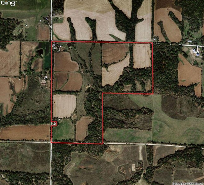 124.42 Acres Hunting Land For Sale in Pike County, Illinois