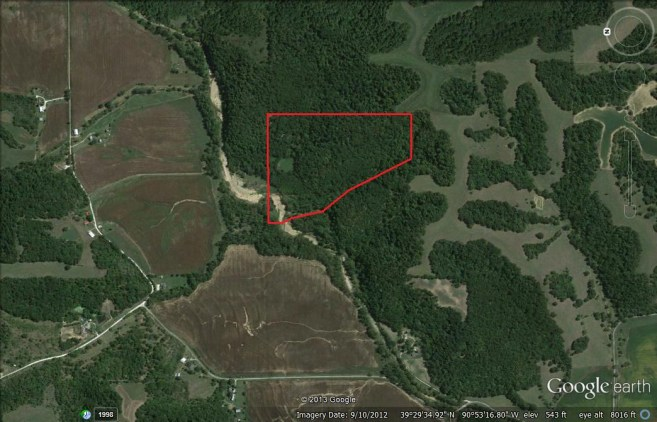 Western Pike County 43 Acres